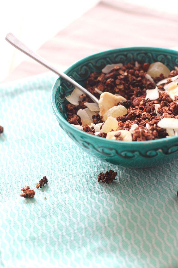 Granola au chocolat et aux fruits secs 3