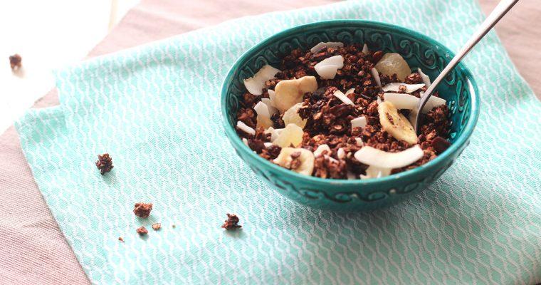 Granola au chocolat, noix de pécan, bananes, noix de coco et gingembre